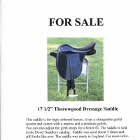 "17.5"" Black Thorowgood Dressage Saddle"